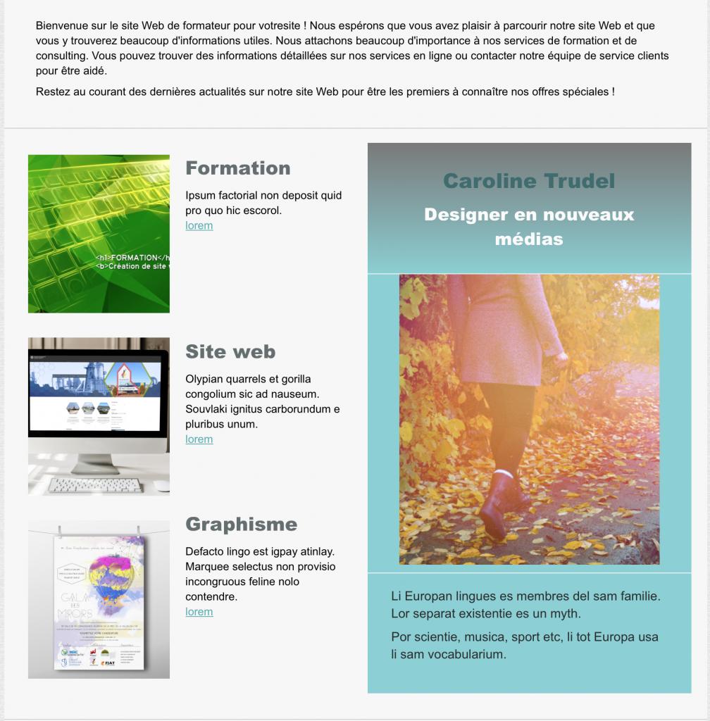 resumer contenu site web