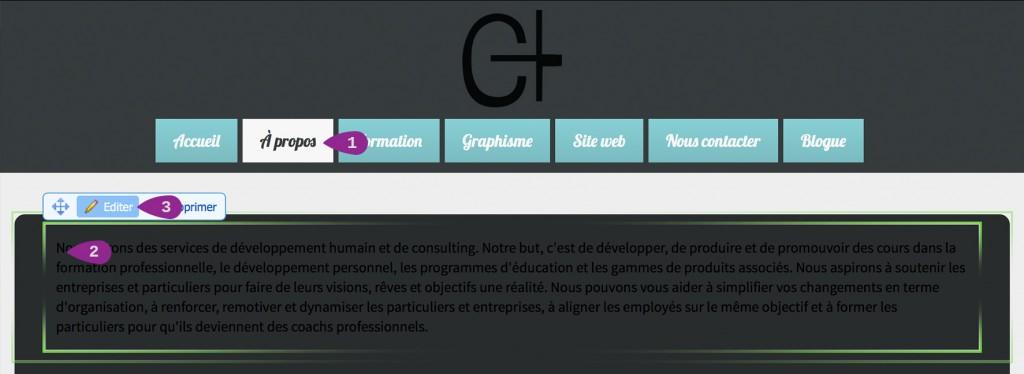 page site web texte