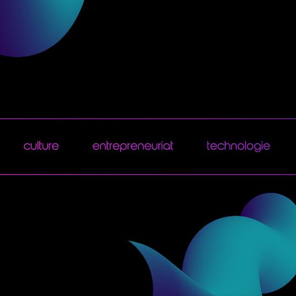 conseil culture entrepreneuriat technologie