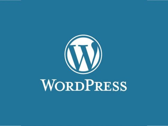 Formation site web wordpress